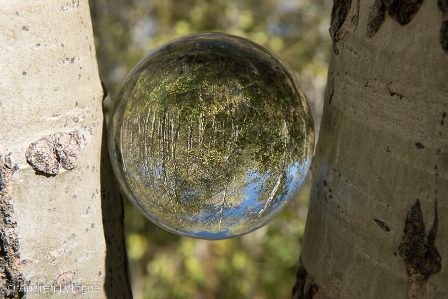 Crystal Ball composition-1